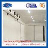 Комната охладителя замораживателя замораживателя взрыва холодной комнаты более холодная/холодильник