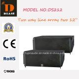 Ds212 ligne bi-directionnelle double d'alignement haut-parleur de 12 pouces