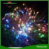 크리스마스 나무 Decotation 조경 삽입 100LED 구리 철사 백색 온난한 백색 다채로운 LED 빛을%s 가진 태양 끈 빛
