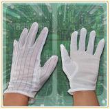 Pvc stippelde de Witte ESD Handschoenen van het Werk