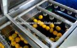 주황색 Ang 레몬 주스 생산 라인 또는 서류정리 장비 기계장치