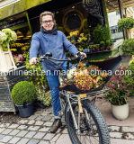 바닷가 함 250W/350W/500W/750W 36V 또는 48V 건전지를 가진 전기 26X4 뚱뚱한 타이어 Bike/E 뚱뚱한 타이어 Bicycle/E 눈 Bike/E 지방 자전거 또는 뚱뚱한 Pedelec, 정면 선반 세륨