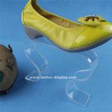 Carrinhos de indicador acrílicos Btr-G1129 da sapata