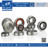 6202 Zz Metal Shield Motor elétrico Deep Groove Ball Bearing