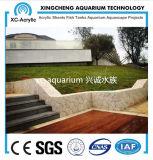 Precio de acrílico claro del proyecto de la piscina de la pared de cristal