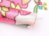 Tessitura di nylon stampata abitudine della fabbrica della Cina