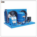 Élément se condensant de réfrigération de compresseur frigorifié par Bitzer d'échangeur de chaleur