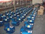 Fuan brosse collecteurs du générateur AC Dynamo St alternateur 15kVA
