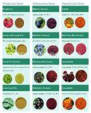 Honokiol 98% Extrait d'écorce de magnolia, inhibe la croissance des bactéries