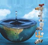 La valvola a sfera d'ottone di alta qualità con elimina il rubinetto (NV-1081)
