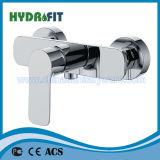 Bom Faucet de banheira de bronze (NEW-FVB-2668C-21)
