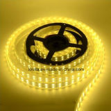 5m DC12V Wateproof tubo 5050SMD LED 120/M de fileira dupla faixa de LED