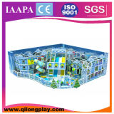 최신 판매 눈 주제 실내 연약한 운동장 (QL-16-23)