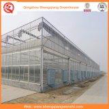 로즈 감자를 위한 정원 또는 농장 또는 갱도 다중 경간 폴리탄산염 장 온실