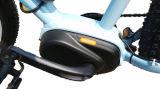4.0 인치 250W 뚱뚱한 타이어 F/R Dsic 브레이크 전기 현탁액 포크 중국은 판매를 위한 중앙 모터 산악 자전거를 만들었다