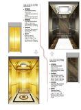 호화스러운 훈장을%s 가진 가득 차있는 공동 전송자 엘리베이터