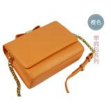 Самые лучшие продавая миниые мешки Tote с смычком для вспомогательного оборудования женщин