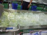 Linha de processamento inteiramente automática linha de secagem de lavagem da salada Wacs-2000 linha da estaca das hortaliças de processamento de secagem de lavagem da embalagem da estaca do Root-Stock