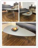 스테인리스 (CT28)를 가진 높은 좋은 품질 탁자