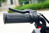 Cheap Pocket Bike 100W para la venta
