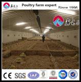 Закрытое птицы дома система автоматической куриное мясо бройлеров сельскохозяйственное оборудование
