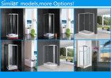 Nouveau style de cabine de douche en verre clair simple cabine de douche (BLS-9420S)