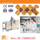This Standard Small Food Lab Twin Screw To extrude