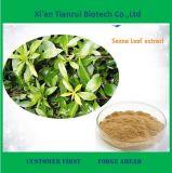 De ISO Verklaarde Fabriek levert Uittreksel van het Blad van de Seneplant van 100% het Natuurlijke