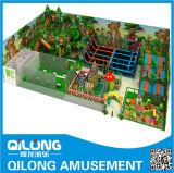 Standerd élevé badine le matériel d'intérieur de cour de jeu (QL-163D)