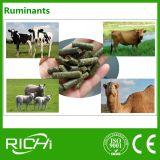 Boulette d'alimentation de luzerne d'usine d'alimentation de ruminants de chameau de cerfs communs de moutons de bétail faisant le moulin de machine