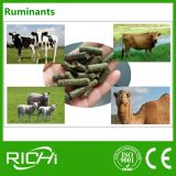Les bovins moutons Deer Ruminants Pellet d'alimentation de la luzerne Making Machine Mill