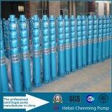 Pompe centrifuge verticale submersible pour eau profonde