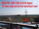 Megatro 220кв 2b8-ди-джей(40-90 градусов Sc тяжелых под углом и клеммой трансмиссии в корпусе Tower
