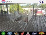 Oficina de la estructura de acero en las Islas Salomón
