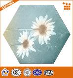 Última Flor polido de padrão de ladrilhos de porcelana