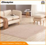 販売促進の耐久の靴のクリーニングの居間の床のマット、居間の床のマット、