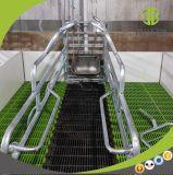 Equipo galvanizado de la casa del cultivo de cerdo de la INMERSIÓN caliente de la alta calidad