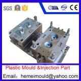 Muffa di plastica di precisione che fa lo stampaggio ad iniezione del prodotto