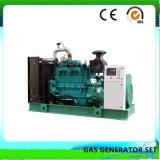 턴키 프로젝트 생물 자원 발전소 가스 힘 전기 발전기 (200KW)