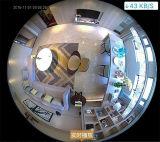 無線電信360度のパノラマ式のカメラの球根のタイプIPのカメラの魚目のホームセキュリティー装置IPのカメラ