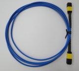 MPO/APC-MPO/APC 광섬유 제조자