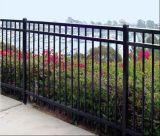 Revêtement en poudre 3rails Spear haut clôture en fer forgé/clôture de l'acier/clôtures ornementales