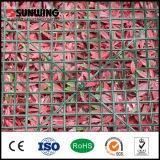 La rete fissa artificiale di plastica del Boxwood del giardino Plat
