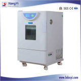 精密Thermostatic Incubator - Cell Culture、80° CのLCD表示