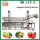 Constructeurs végétaux de machine à laver