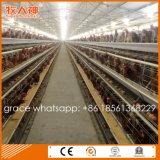 Macchinario automatico dell'azienda avicola della gabbia di batteria per gli strati