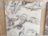 600X600m m esmaltaron el azulejo de suelo de cerámica de la pared de la inyección de tinta