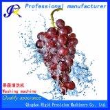 Trauben-Waschmaschine-Frucht-Unterlegscheibe
