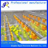 Máquina de la limpieza de aerosol de la lavadora de la fruta y verdura