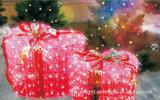 Lumière décorative de boîte-cadeau de l'hôtel extérieur DEL d'année neuve pour la décoration de jardin
